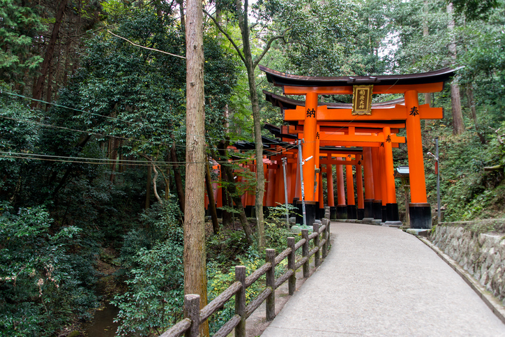 Red Torii gates at Fushimi Inari Shrine