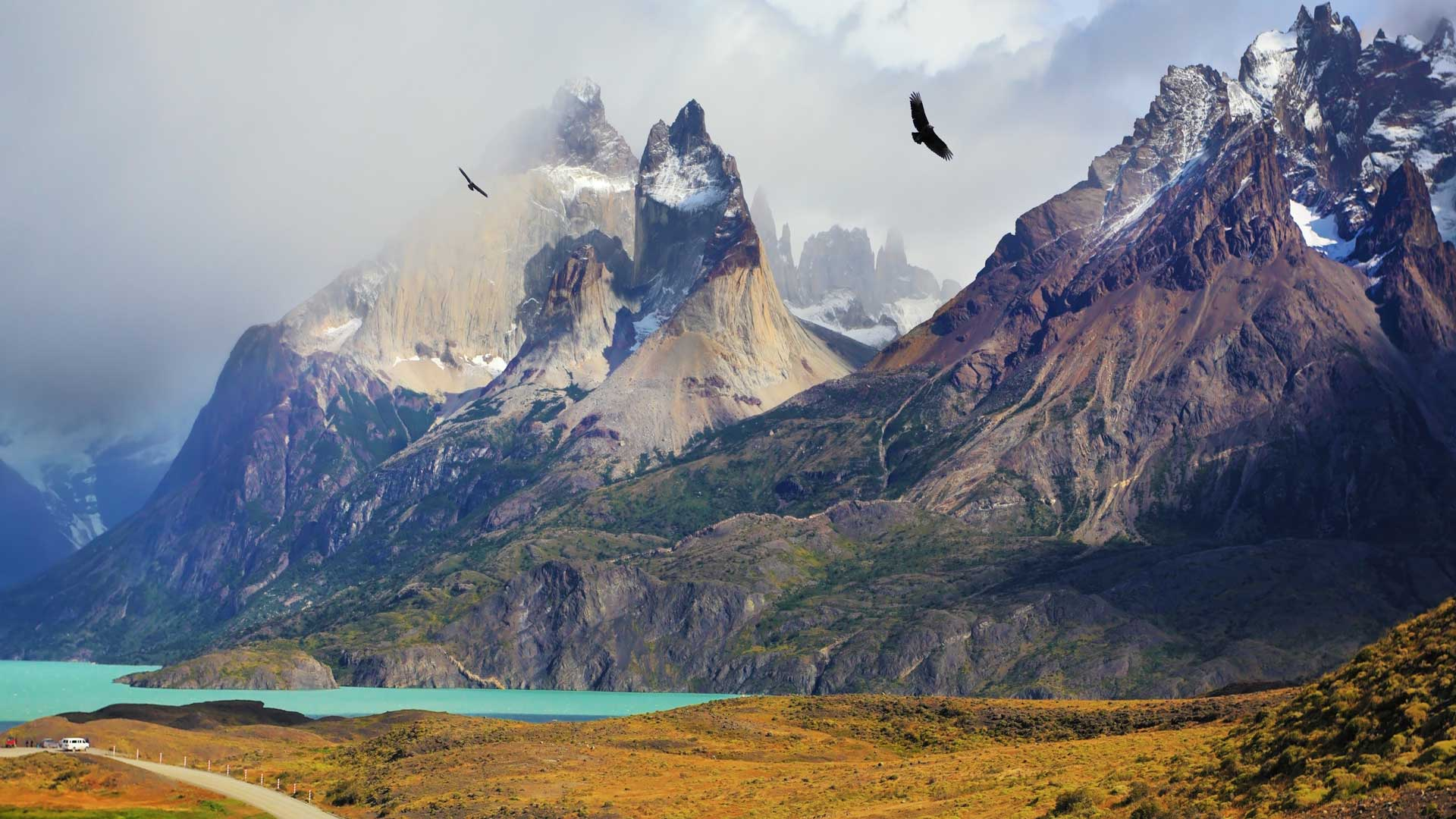 Patagonia Hiking Excursion