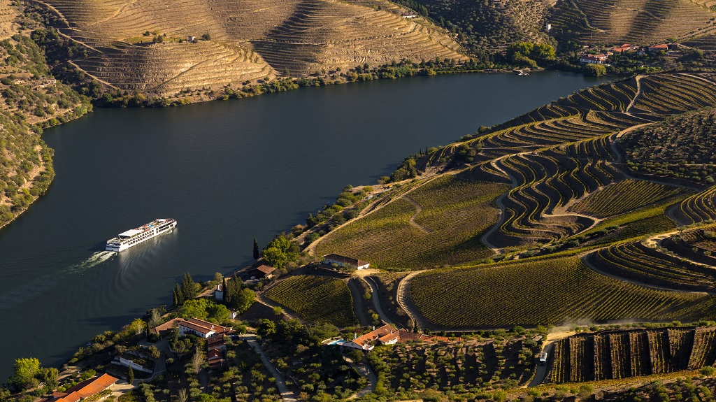 UNESCO World Heritage, the Douro Valley beautiful endless lines of Vineyards.